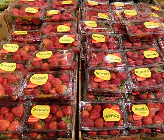 アメリカで一番売れてるイチゴのブランドは?_b0007805_19481825.jpg