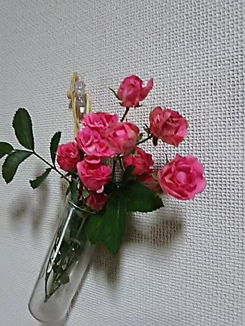 f0316507_19090275.jpg