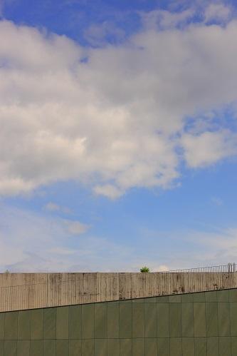 雨が降る前に_e0241944_22450939.jpg