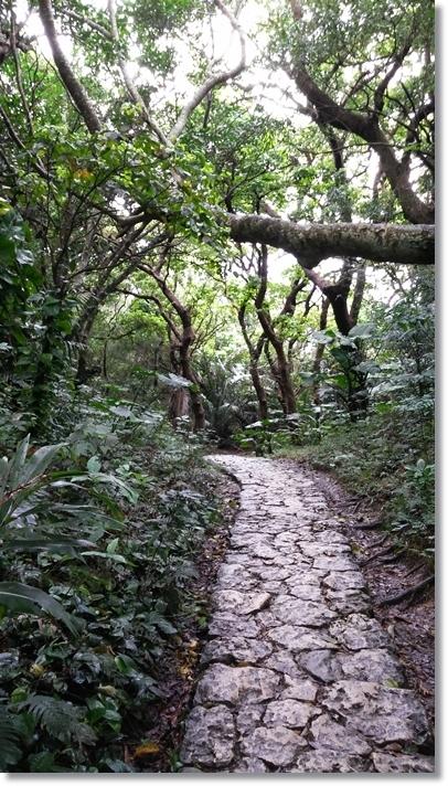 沖縄最終日_b0025947_19272430.jpg