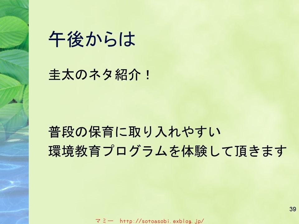 d0105749_18244745.jpg