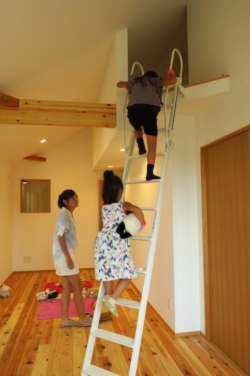 オープンハウス「Pointy House」_f0324766_16155828.jpg