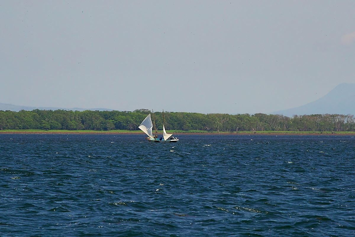 北海道の夏 ′17_打瀬船(2)_d0125872_22412772.jpg