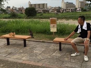 チビ輔の練習見た後に~ 大和川散歩~☆_e0123286_19013254.jpg