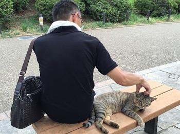 チビ輔の練習見た後に~ 大和川散歩~☆_e0123286_19025475.jpg