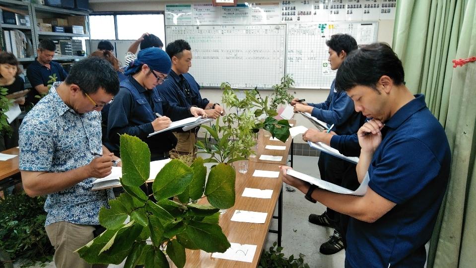 造園技能士 要素講習会_b0172896_20503343.jpg