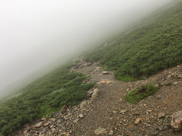 2017 夏休み一人登山 南アルプス南部 その2_e0000910_09124805.jpg