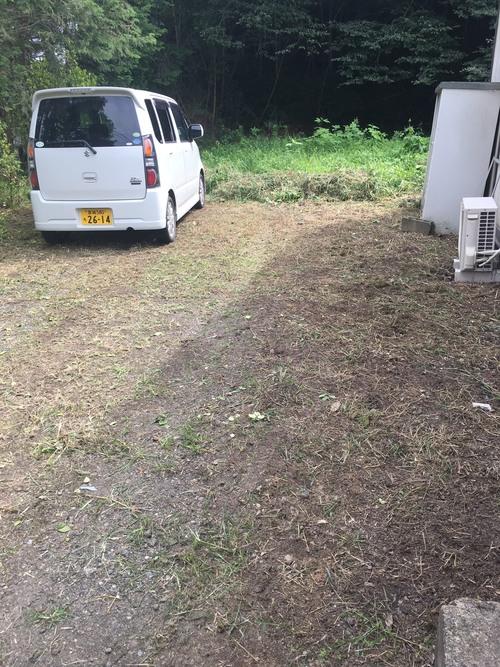 草刈り_e0124021_1793182.jpg
