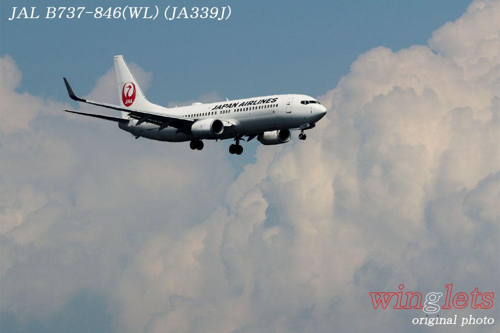'17年 京浜島・つばさ公園レポート ・・・JAL/JA339J_f0352866_20275534.jpg