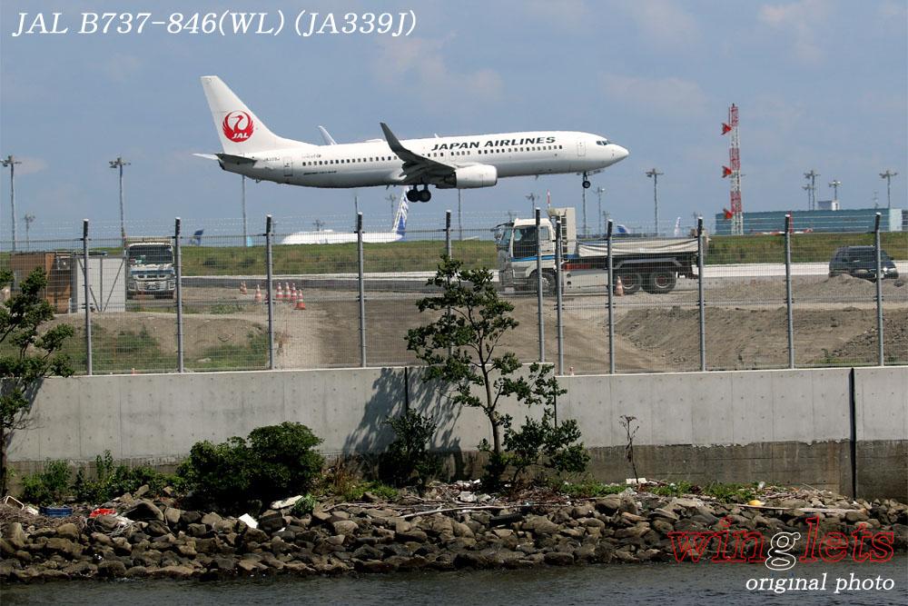 '17年 京浜島・つばさ公園レポート ・・・JAL/JA339J_f0352866_20281353.jpg
