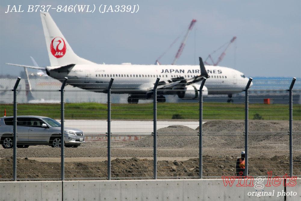 '17年 京浜島・つばさ公園レポート ・・・JAL/JA339J_f0352866_20282381.jpg