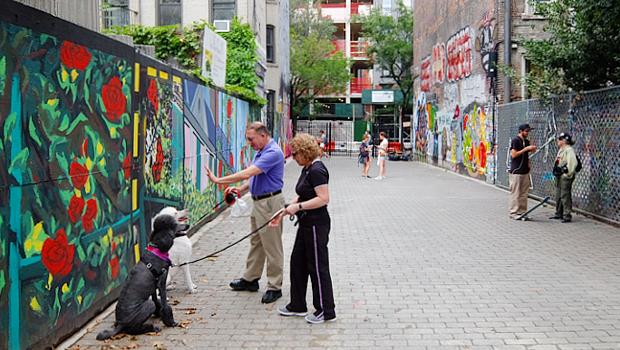グラフィティだらけのNYの公園、First Street Green Art Park_b0007805_52452100.jpg