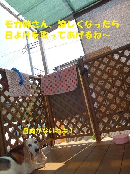 f0121712_16080261.jpg