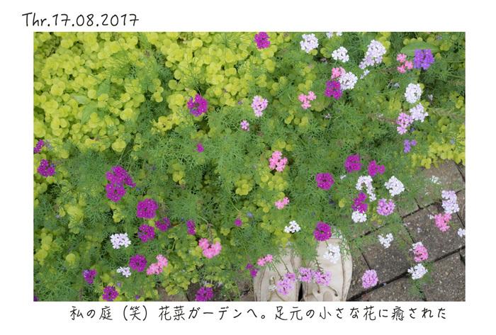 e0238623_20060117.jpg