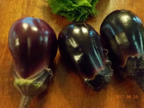 またまた、水茄子のお漬物。_a0173527_14251478.jpg