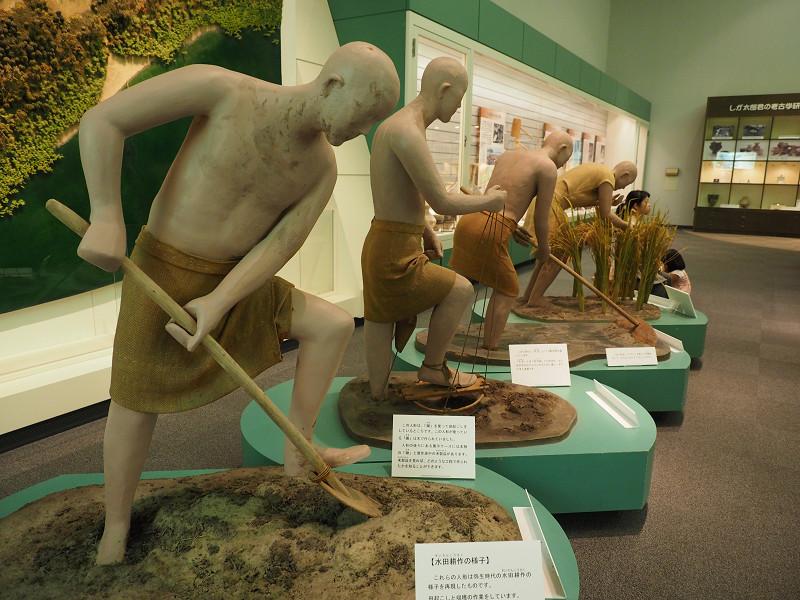 県立安土城考古学博物館へ行く_e0374932_06572744.jpg