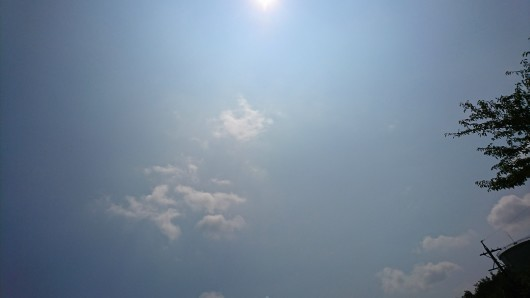 晴れのち静かな雨。_d0362666_13110308.jpg