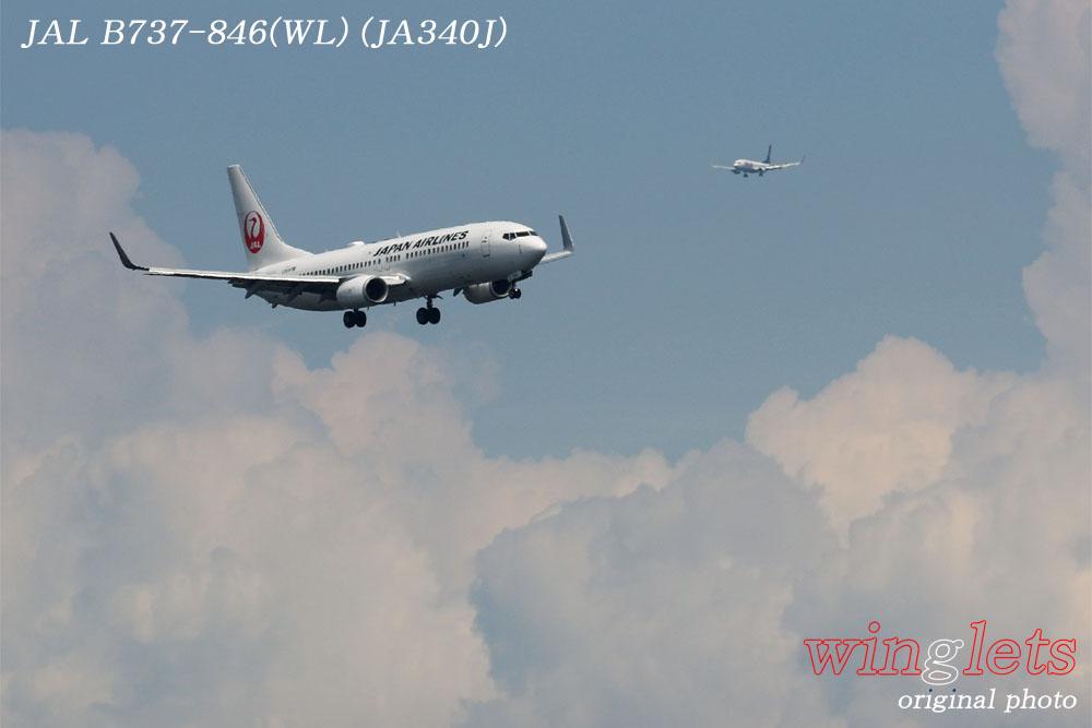 '17年 京浜島・つばさ公園レポート ・・・JAL/JA340J_f0352866_22253223.jpg