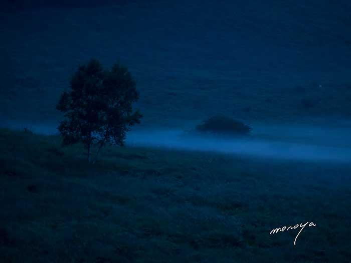 朝の湿原_c0085877_5501265.jpg