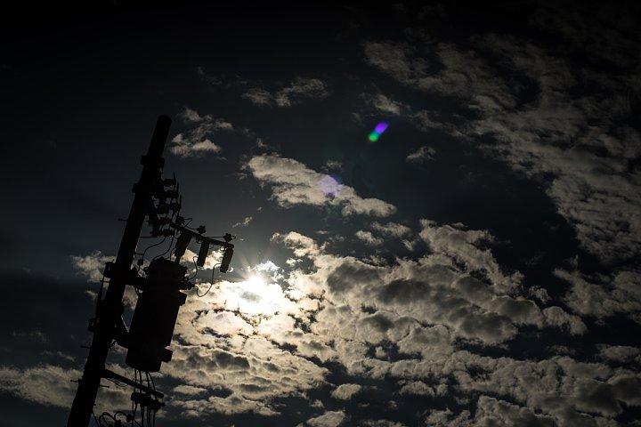 秋を宿す夏の光蜥蜴_d0353489_23112586.jpg