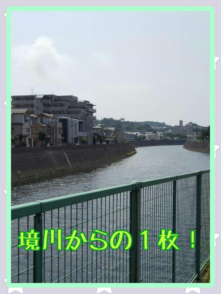 d0334805_11282622.jpg