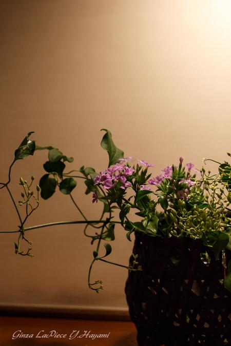 花のある風景 生け花の雰囲気_b0133053_01124215.jpg