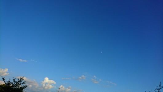 blue・blue・blue_d0362666_17495273.jpg