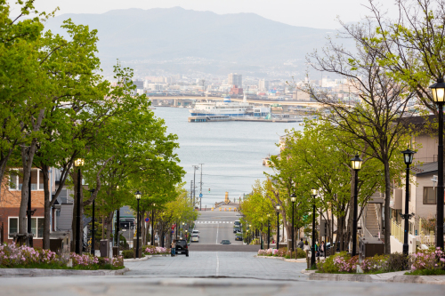【New Open】函館山の麓に建つ 築80年の日本家屋_f0201310_12161419.jpg