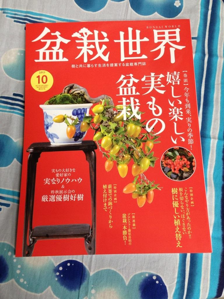 盆栽世界10月号_f0170915_16033956.jpg