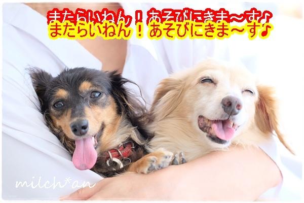 b0115642_17511906.jpg