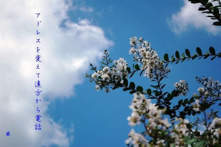 f0379160_16232564.jpg