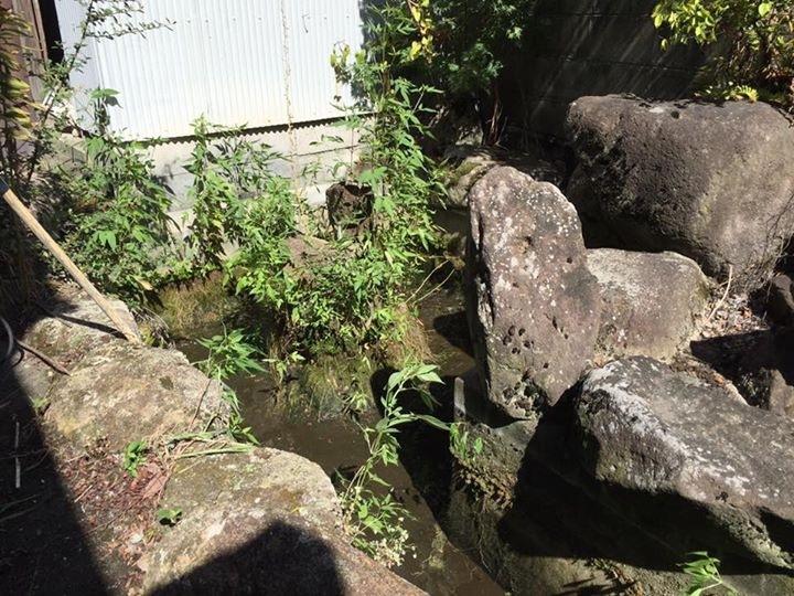 加古川市東神吉町の平屋_f0115152_08462187.jpg