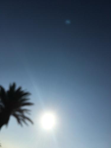夏エトセトラ。_f0223361_17495942.jpg