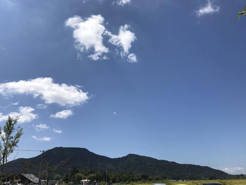 新潟町会議ありがとうございました!_f0324313_13101834.jpg