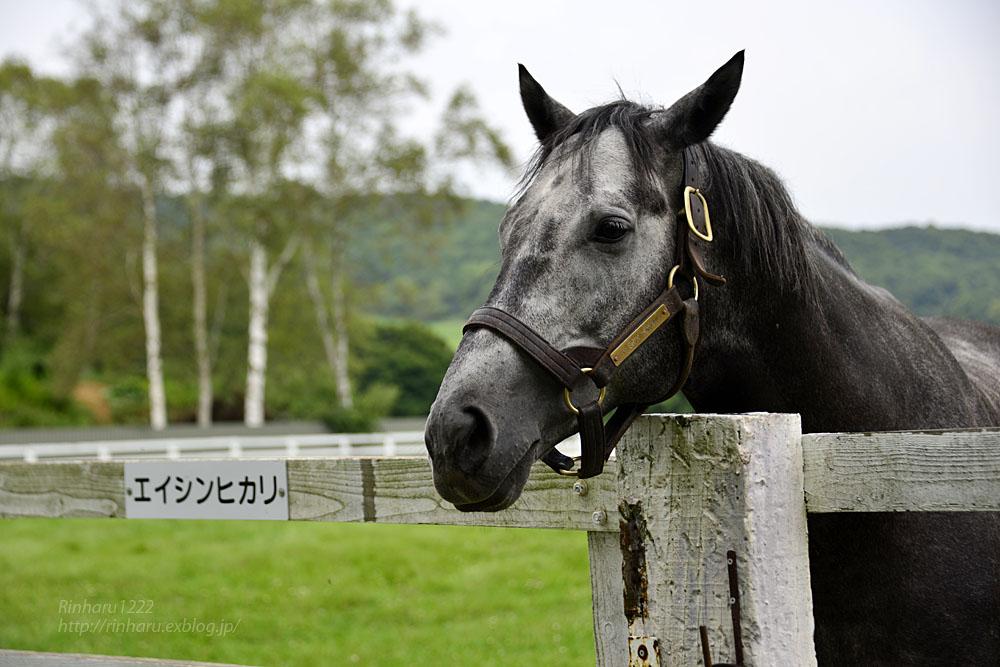 2017.8.31-9.3 長月の馬旅_f0250322_16472143.jpg