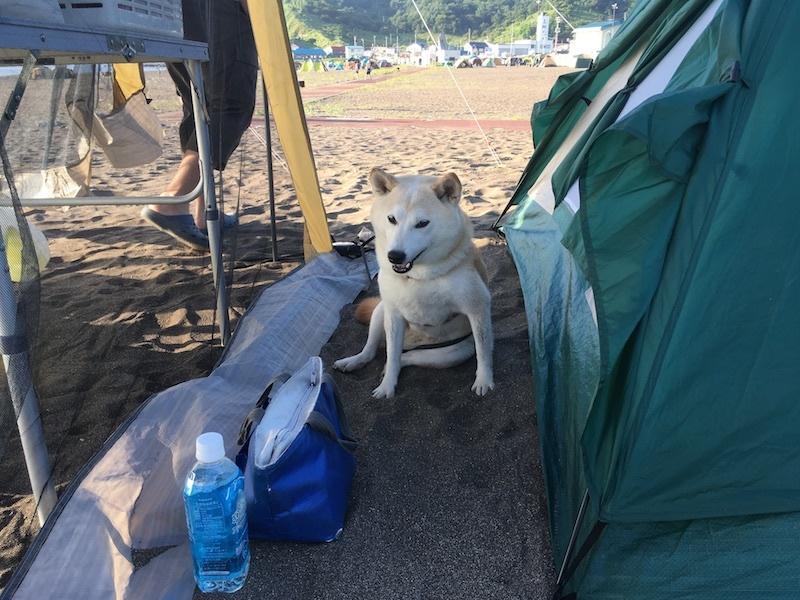 夏の思い出、8月のキャンプin浜益_e0227023_17352815.jpg