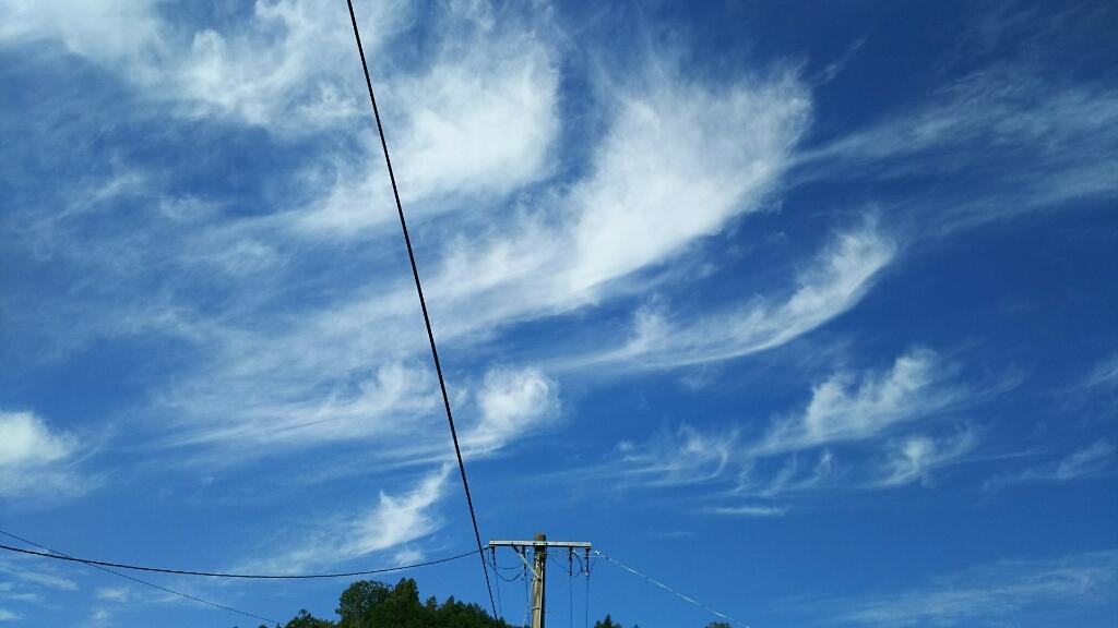 9/2(土)  秋の空♪_a0272042_13473071.jpg