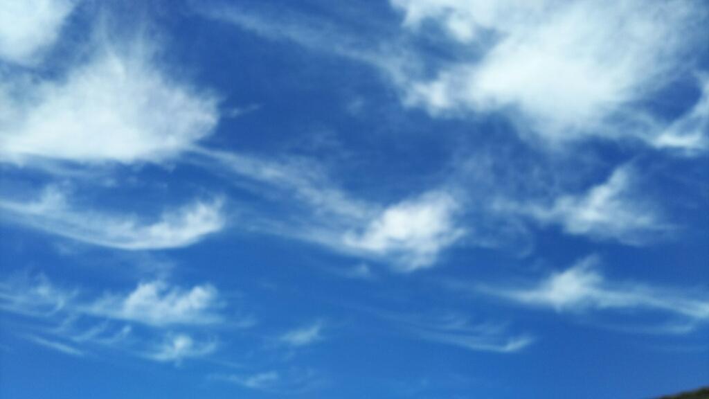 9/2(土)  秋の空♪_a0272042_13473426.jpg