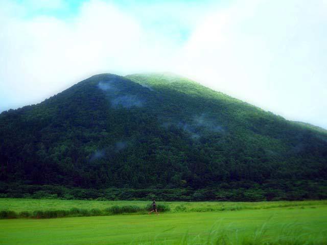 「三瓶小豆原埋没林公園」は原始の森だった!(追記)_d0295818_23290462.jpg
