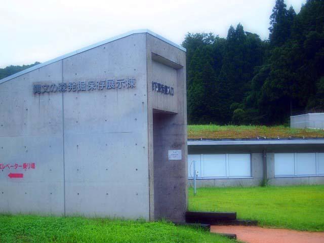 「三瓶小豆原埋没林公園」は原始の森だった!(追記)_d0295818_23423357.jpg