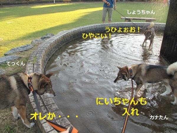 f0143123_09200759.jpg