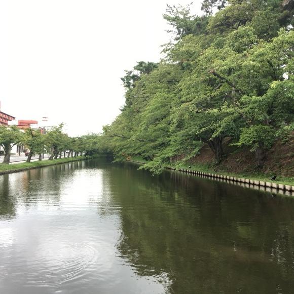 f0149924_20113016.jpg