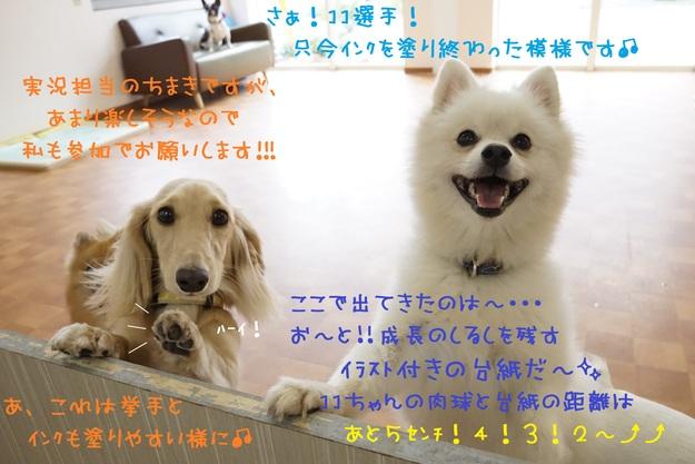 d0220513_1754039.jpg