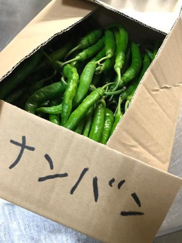 季節野菜のスパイシーピクルス「ナンバン」_e0345224_07541728.jpg
