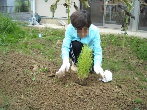 調理実習・農作業 9月_a0115956_14395415.jpg