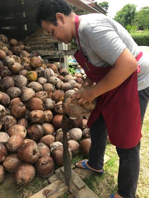 タイ サムイ島 のココナツオイル工場へ_c0141025_12100093.png