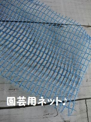 f0128146_07021531.jpg