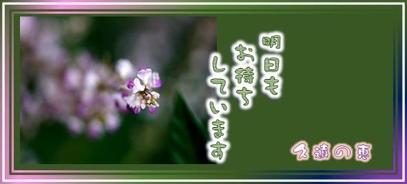 f0214467_07443310.jpg