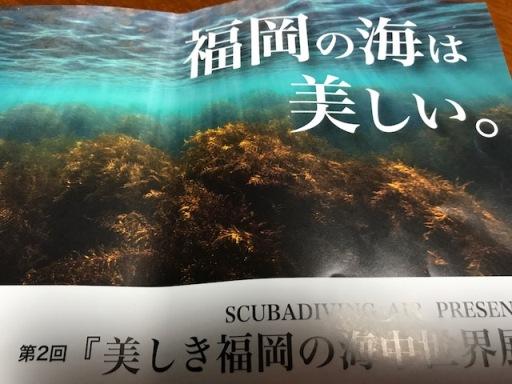 福岡の海は美しい(福岡の海中世界展)_b0214473_8452685.jpg