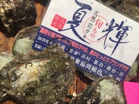 鳥取港海鮮産物市場かろいち  若林商店 ご馳走空間_e0115904_21513687.jpg